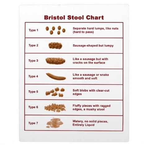 Bristol Stool Color Chart by Bristol Stool Chart Zazzle