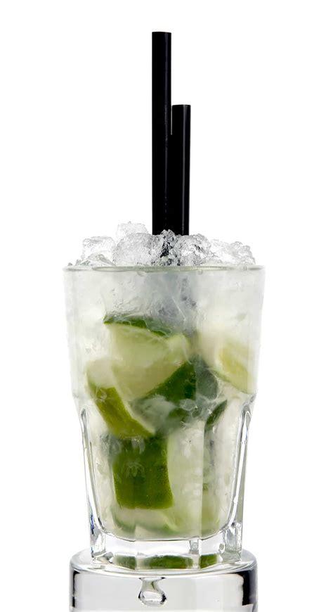 cocktails selber machen alkoholische cocktails fuer die