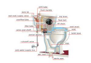 toilet bowl brush: toilet bowl parts diagram toilet bowl parts diagram ijpg toilet bowl parts diagram