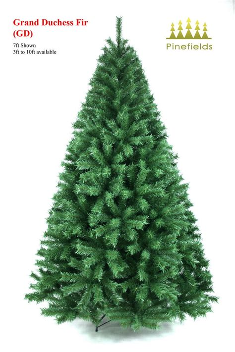 china christmas tree grand duchess fir gd china