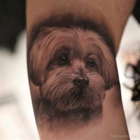 dog portrait tattoo tattoos designs pictures page 2