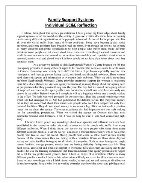 Individual Reflective Essay by Family Support System Individual Reflection