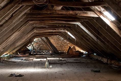 Attic Pest - how to when your attic insulation needs replacing