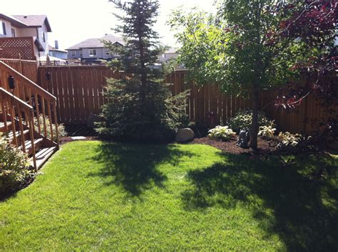 landscaped backyards pictures backyard landscaping contemporary landscape calgary