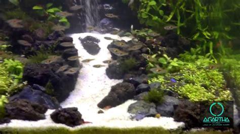 aquarium design waterfall agartha world underwater waterfall aquarium 3 youtube