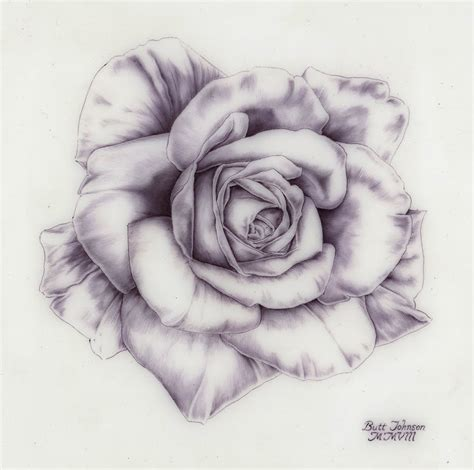 draw a rose tattoo drawing 3d drawing