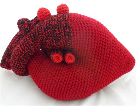 knitting pattern anatomical heart 74 best amigurumi medical scientific images on