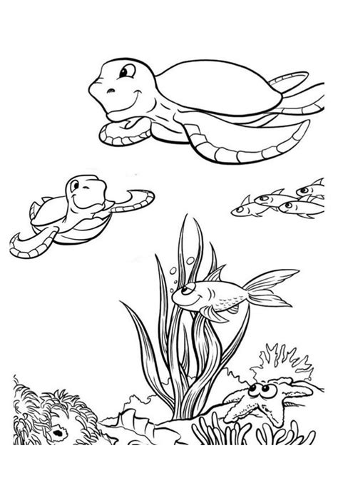 turtle love coloring pages print coloring image turtle and patterns