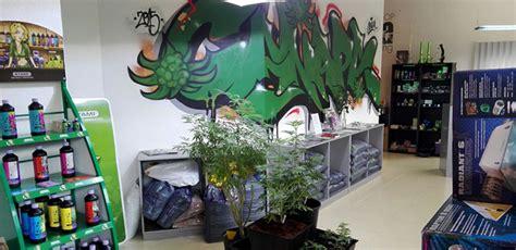canapé promotion canapa grow headshop hanfjournal