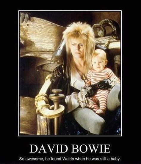 David Bowie Meme - david bowie found waldo dobrador celebrities