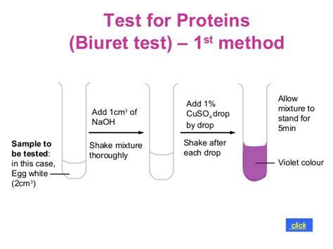 protein lab test nutrients 2012