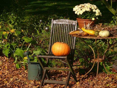 Garten Pflanzen Oktober der garten im oktober fit f 252 r den winter myhammer magazin