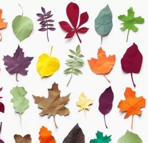 cara membuat bunga dari kertas pelangi 14 cara membuat hiasan dinding dari kertas mudah dan