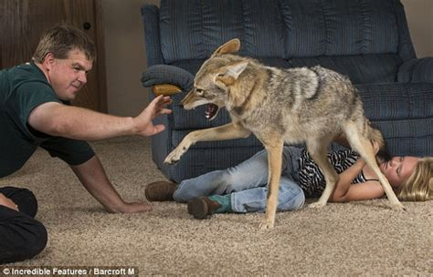 The eight year old Wisconsin girl who has a pet coyote