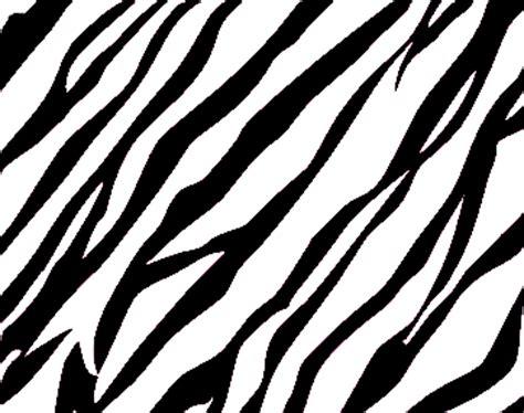 zebra design background zebra print background free images at clker com vector