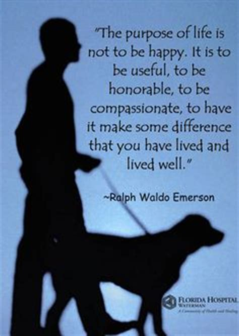 images  quotes  pinterest therapy dogs  thursday  international day