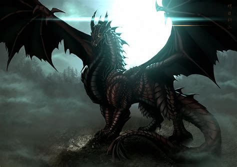 dark dragon wallpaper widescreen water dragon wallpaper hd wallpaper area hd wallpapers