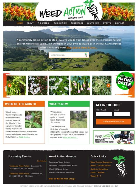 new website ideas 2017 weeds website whangarei website design marketing