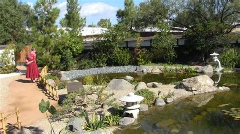 Gardening In Tucson Pond Picture Of Yume Japanese Gardens Tucson