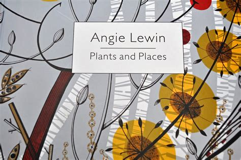 angie lewin plants and playing in the attic angie lewin