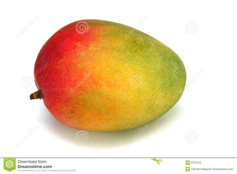 frutti free z price colorful mango fruit stock image image of isolated white