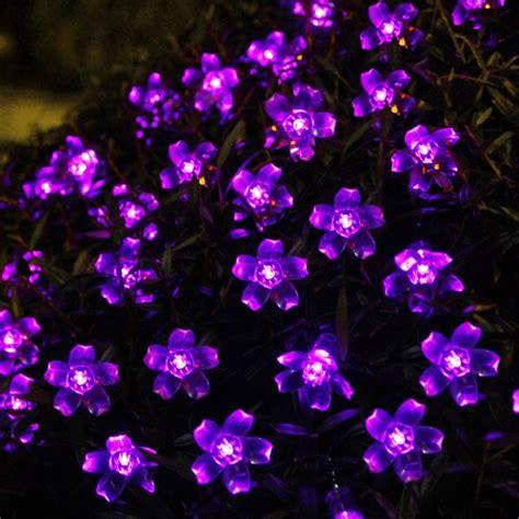 solar flower lights for garden innoo tech solar string lights 50 flower led outdoor
