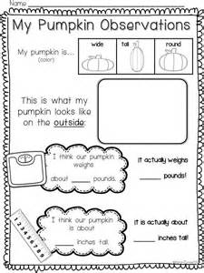 science observation worksheet for kindergarten