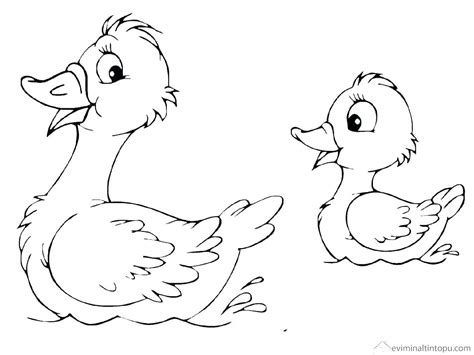 Coloring Pictures Of Ducks by Duck Coloring Page Picture Of A Duck To Color Duck Color
