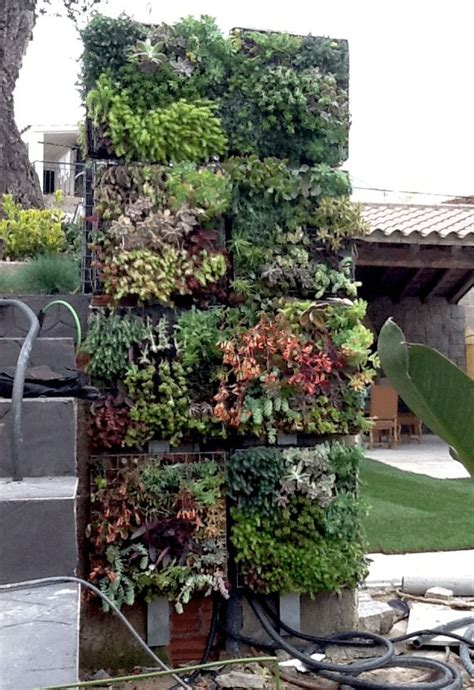 Vertical Gardens Construction 17 Best Images About Living Wall On Gardens