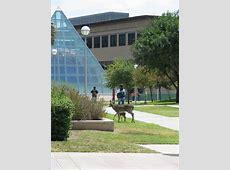 Texas A&M International University Veterans Affairs Jobs
