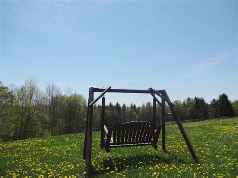 dingle swing dingle swing 28 images graeme dingle foundation