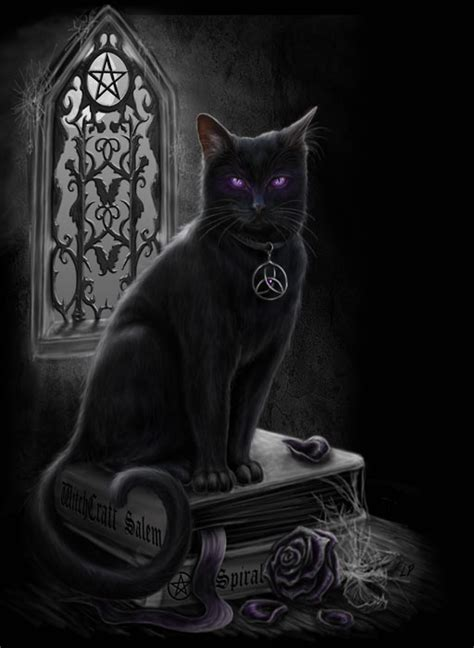 pagan chat rooms witches black cat by sheblackdragon on deviantart