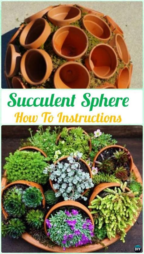 indoor flower garden 1000 ideas about indoor succulent garden on