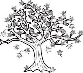 coloring page of maple tree maple tree coloring page az coloring pages