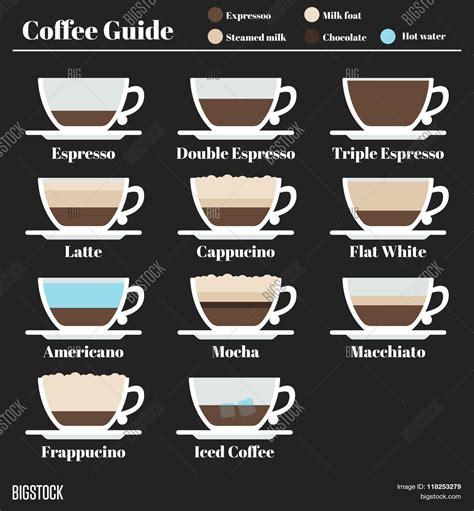 espresso drinks coffee guide set drinks vector photo bigstock