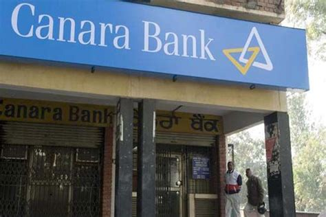 canara bank canara bank q1 profit slips 52 to rs 229 cr the