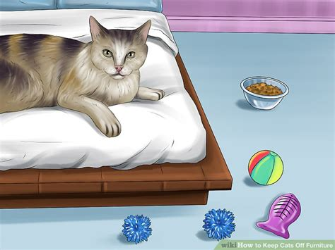 how to keep cat off couch how do you get cat pee out of furniture best furniture 2017