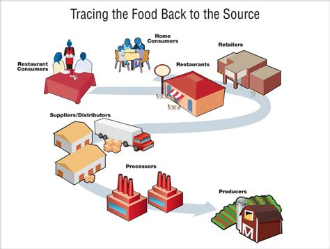 cdc foodborne outbreak investigations figure