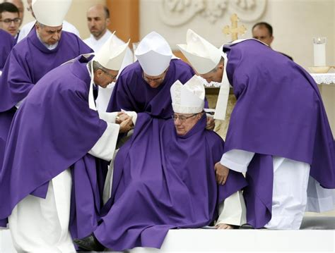 a carpi papa francesco a carpi il fotoracconto 1 di 1 bologna