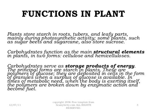 carbohydrates location in carbohydrates