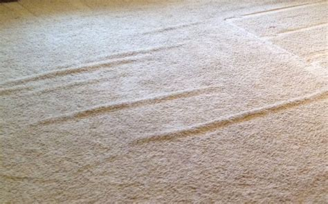 rug cleaning state college pa carpet maintenance wrinkles and ripples carpet cleaning state college pa