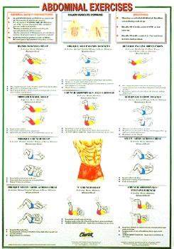 abdominal exercises wall chart poster chartex ltd fitness exercise
