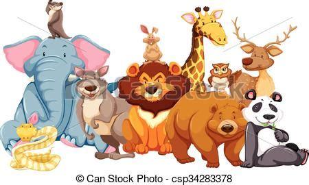 fotos animales juntos salvaje vida animales juntos ilustraci 243 n ilustraci 243 n