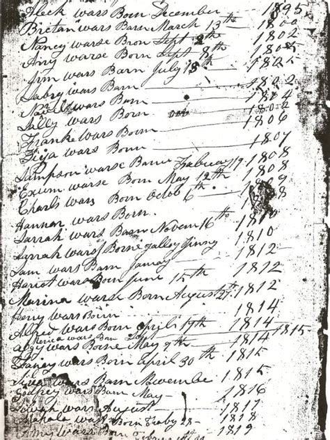 Nashville Birth Records Research The Washingtons Of Wessyngton Plantation Stories Of My Family S Journey To