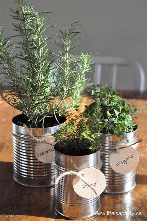 Window Sill Herb Garden Designs Tin Can Herb Garden For Window Sill Your Best Diy Projects Pinterest Window Sill