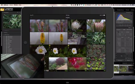 lightroom mobile android tutorial episode 1 getting started with lightroom mobile photo