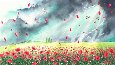where the poppies now grow the poppy series hilary ann robinson martin impey 9780957124585 where the poppies now grow youtube