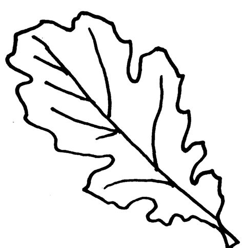 leaf border coloring pages printable fall leaves clip art 64