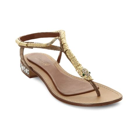 boutique 9 shoes boutique 9 sandals barbiera snake in gold gold