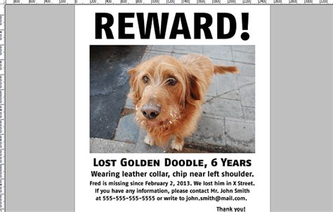 lost yorkie image gallery lost puppy poster